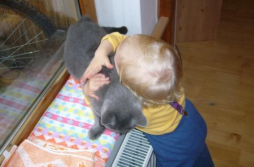 kočka a Helenka