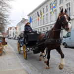 Bruggy – nejromantičtější město Belgie [fotoblog]